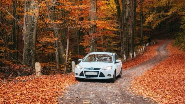 Top Tips for Driving Safely in Autumn
